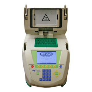 Bio Rad MyCycler Thermal Cycler PCR
